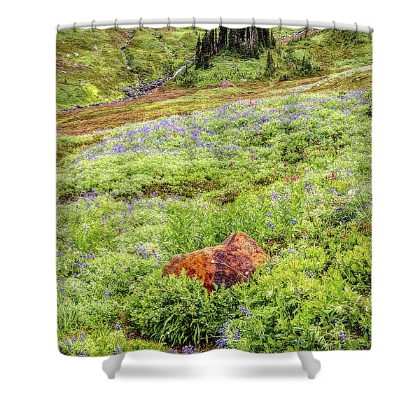 Red Rock Of Rainier Shower Curtain