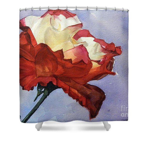 Watercolor Of A Red And White Rose On Blue Field Shower Curtain