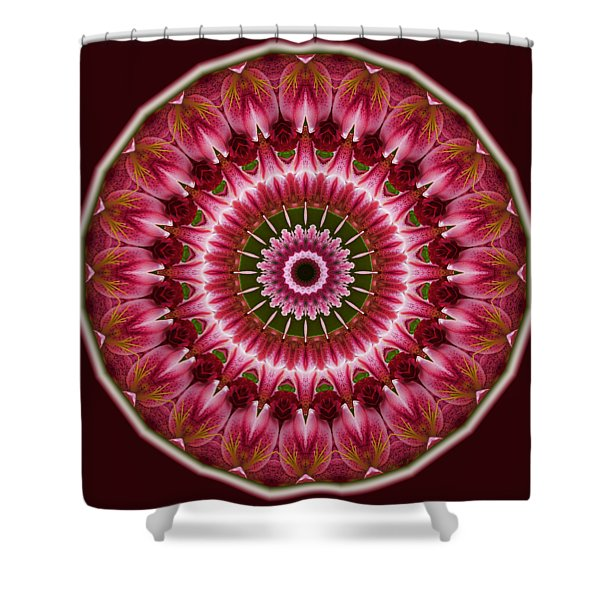 Red Roses And Thorns Shower Curtain