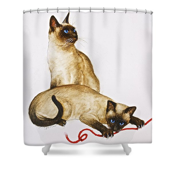 Shower Curtain featuring the painting String Theroy  by Cliff Spohn