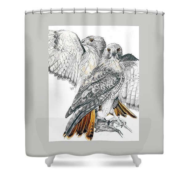 Shower Curtain featuring the mixed media Red-tailed Hawk by Barbara Keith