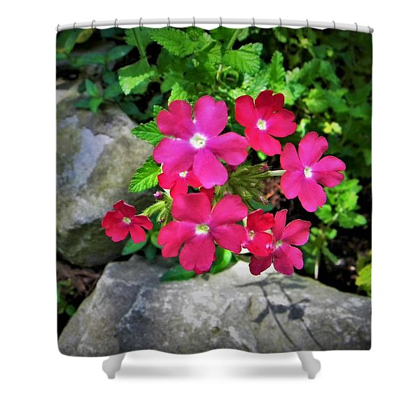 Red Verbena Shower Curtain
