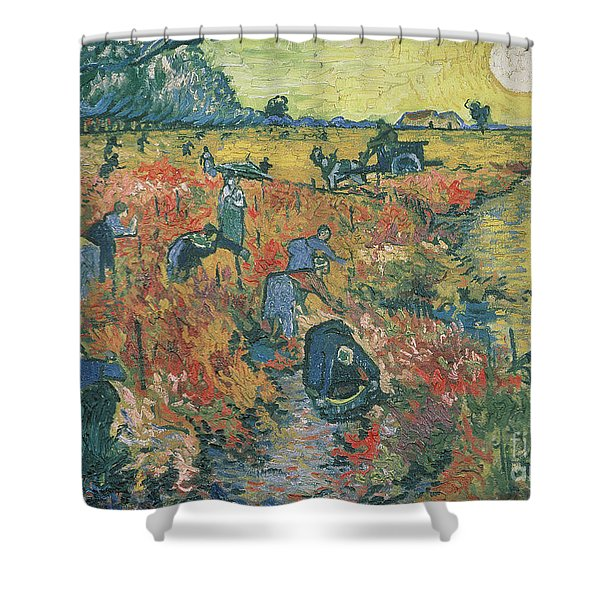 Red Vineyards At Arles Shower Curtain