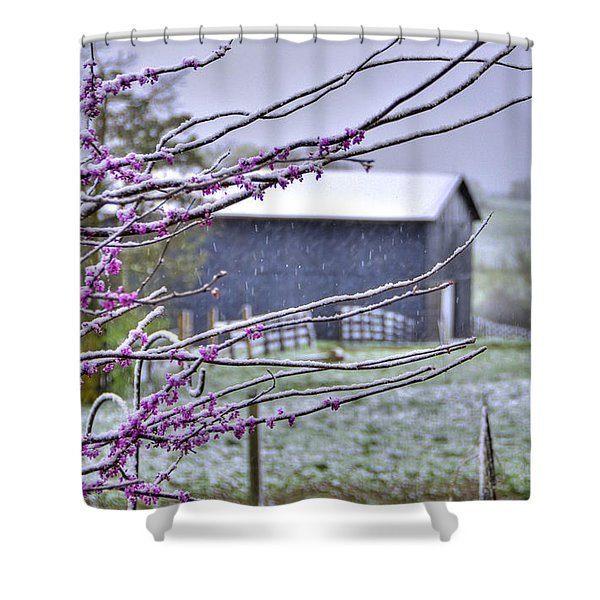 Redbud Winter Shower Curtain