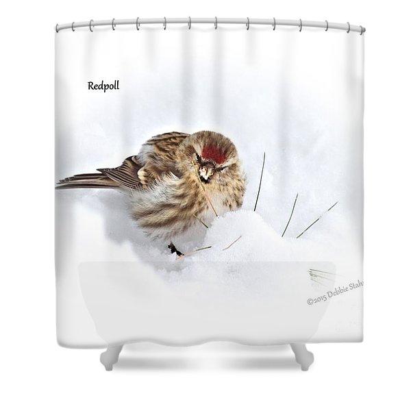 Redpoll Shower Curtain