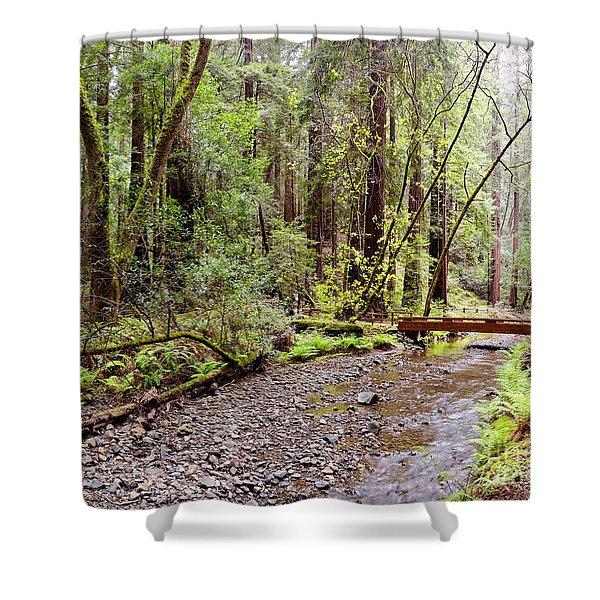Redwood Creek Flowing Through Muir Woods National Monument - Mill Valley Marin County California Shower Curtain