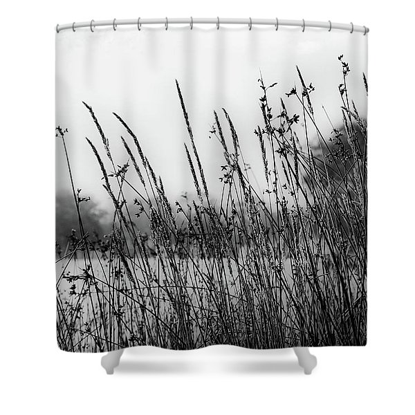 Reeds Of Black Shower Curtain