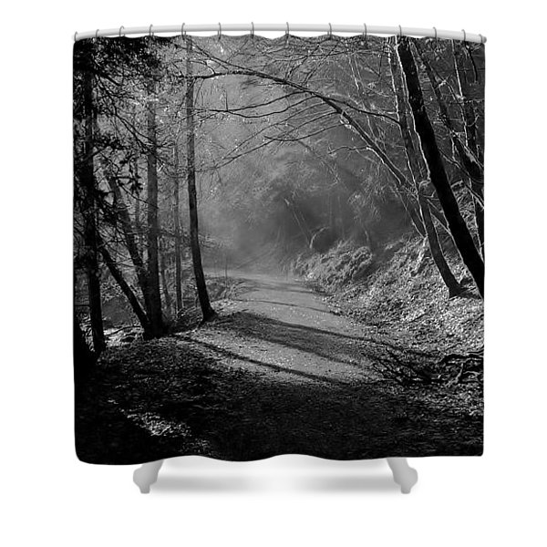Reelig Forest Walk Shower Curtain
