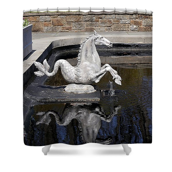 Reflections On A Sea Horse Shower Curtain