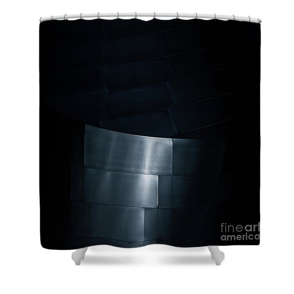 Reflecting On Gehry Shower Curtain