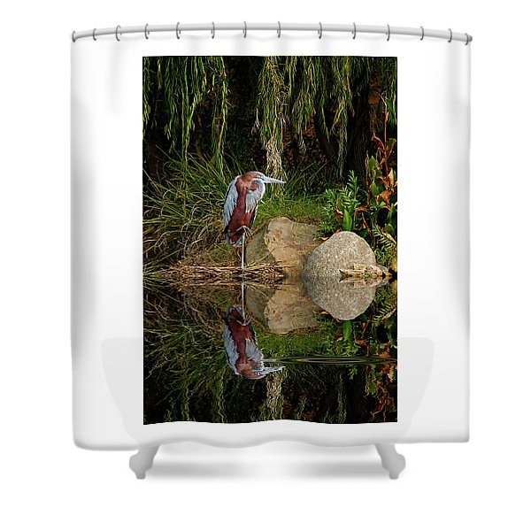 Reflecting On Lunch Shower Curtain