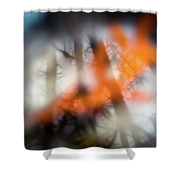 Reflection Of Trees Over An Oak Leaf Encased In Water And Ice Shower Curtain
