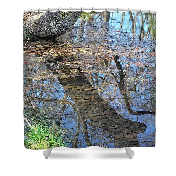 Reflections I Shower Curtain