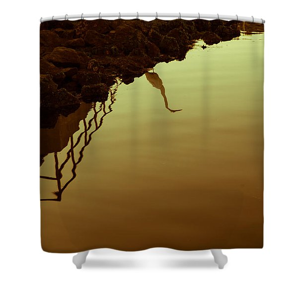 Elegant Bird Shower Curtain