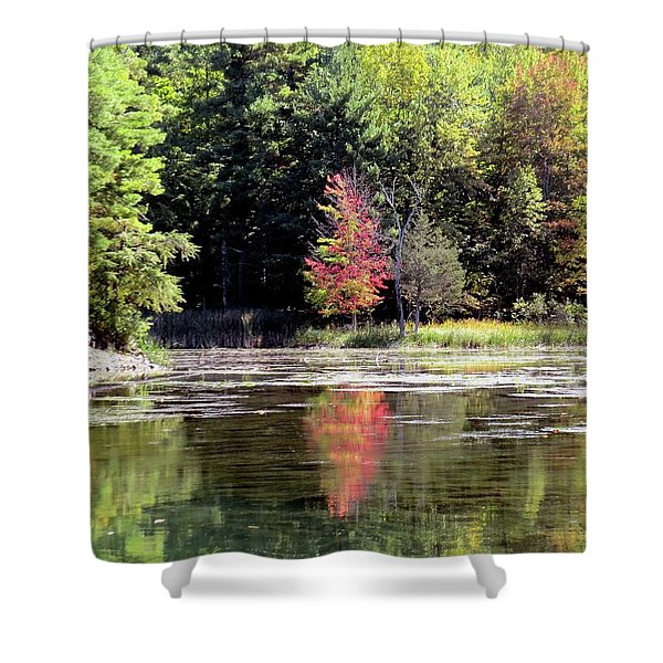Reflections On The Rift Shower Curtain