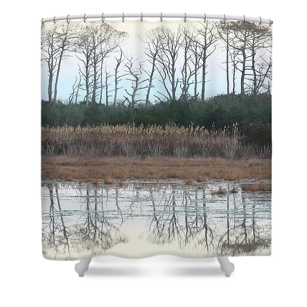 Reflections Winter Shower Curtain