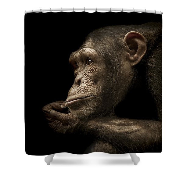 Reminisce Shower Curtain