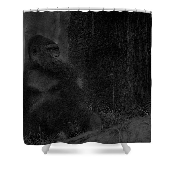 Reminiscent Of Home Shower Curtain
