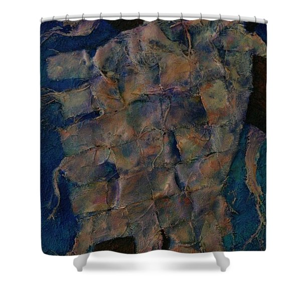 Remnant Shower Curtain
