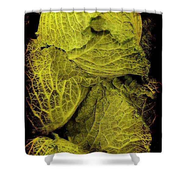 Renaissance Chinese Cabbage Shower Curtain