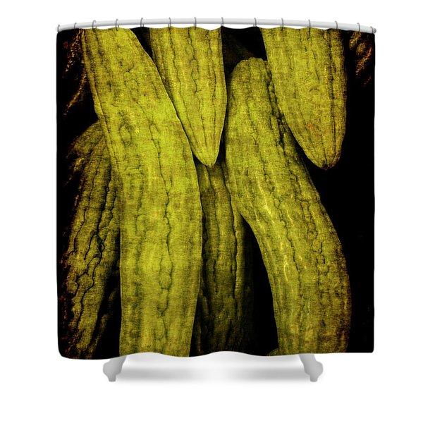 Renaissance Chinese Cucumber Shower Curtain