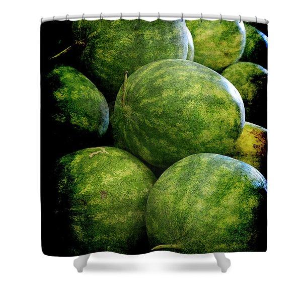Renaissance Green Watermelon Shower Curtain