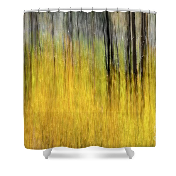 Renewal Abstract Art By Kaylyn Franks Shower Curtain