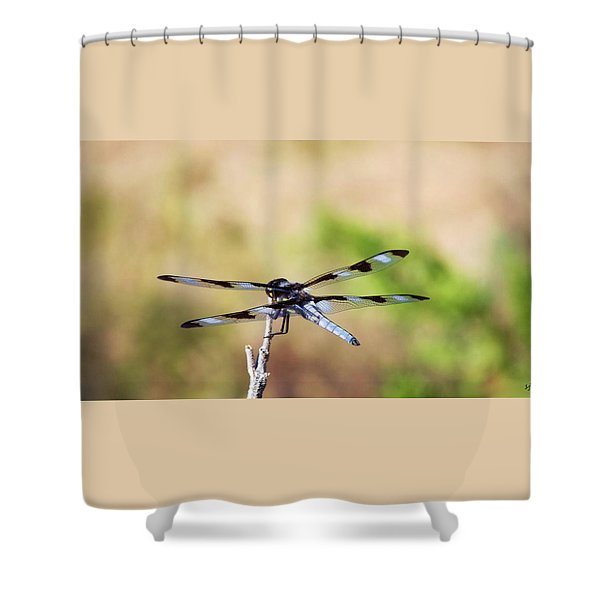 Rest Area, Dragonfly On A Branch Shower Curtain