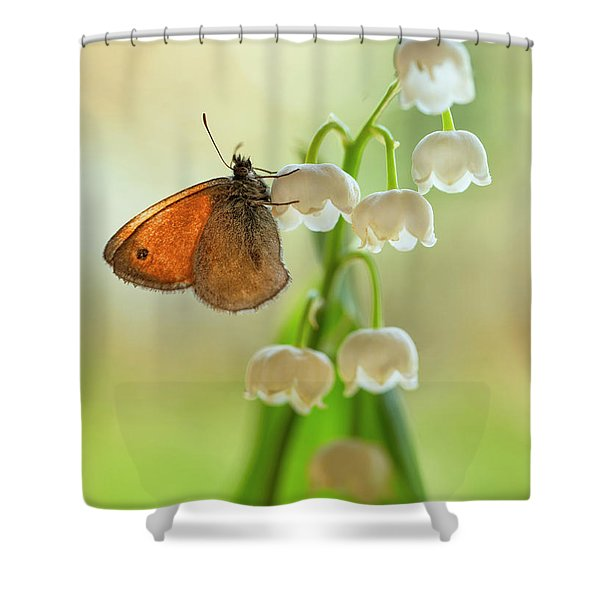 Shower Curtain featuring the photograph Rest In The Morning Sun by Jaroslaw Blaminsky
