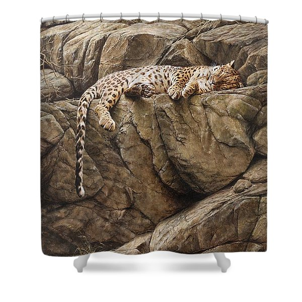 Shower Curtain featuring the painting Resting In Comfort by Alan M Hunt