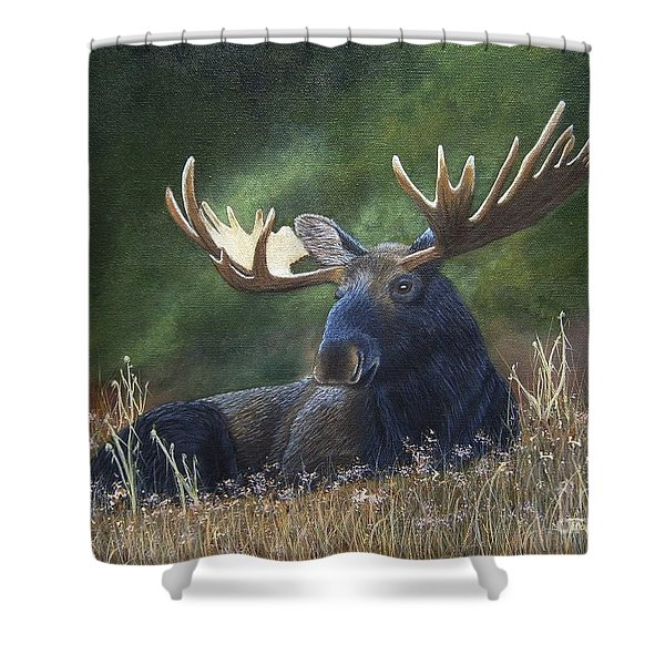 Shower Curtain featuring the painting Resting by Tracey Goodwin