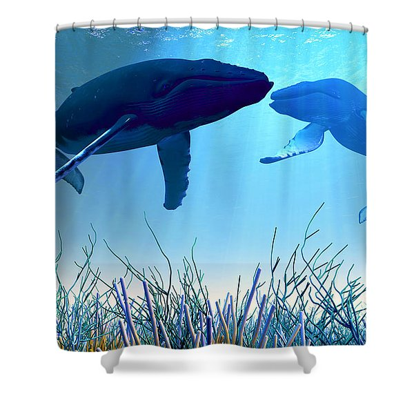 Resting Whales Shower Curtain