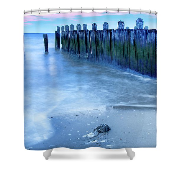 Return To The Bay Shower Curtain