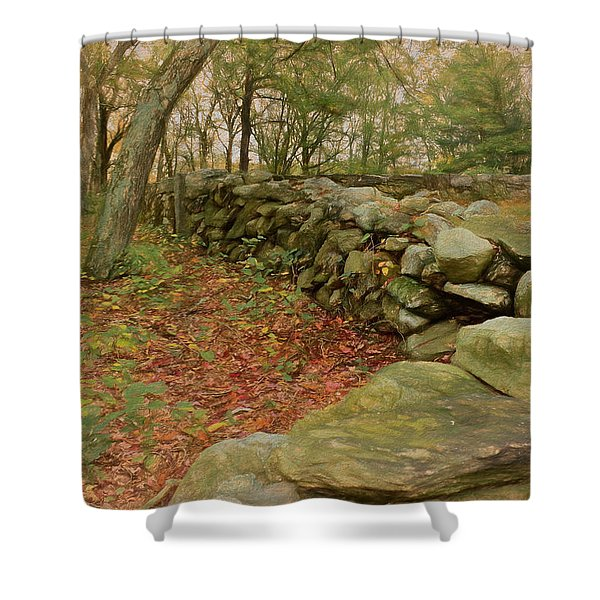 Reverie With Stone Shower Curtain