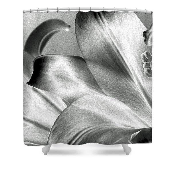 Reverse Shower Curtain