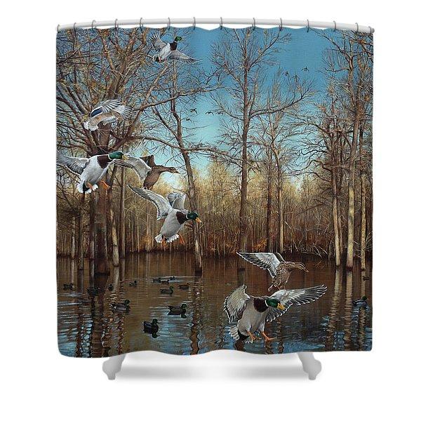 Reydel Hole Shower Curtain