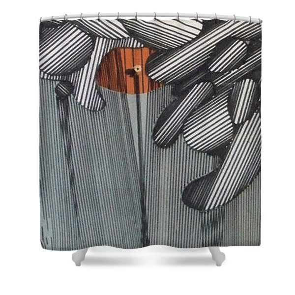 Rfb0100 Shower Curtain