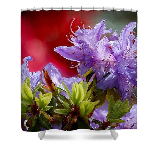 Rhododendron Bluebird Shower Curtain