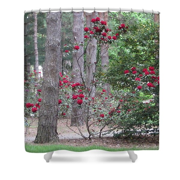 Rhododendrons In Lorain County Shower Curtain