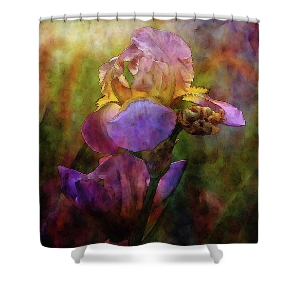 Rich Purple Irises 0056 Idp_22 Shower Curtain