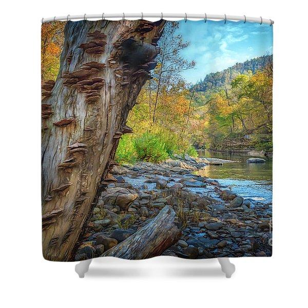 Richland Creek Shower Curtain