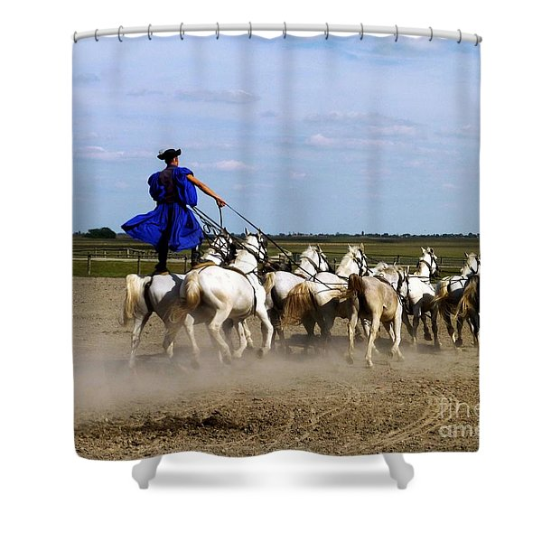 Riding 10 Horses Shower Curtain