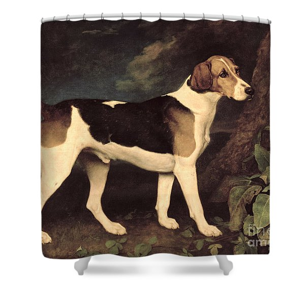 Ringwood Shower Curtain