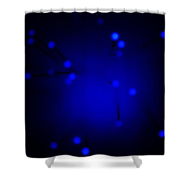Risen Shower Curtain