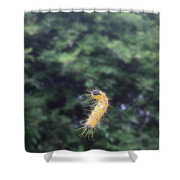 Rising To Rebirth Shower Curtain