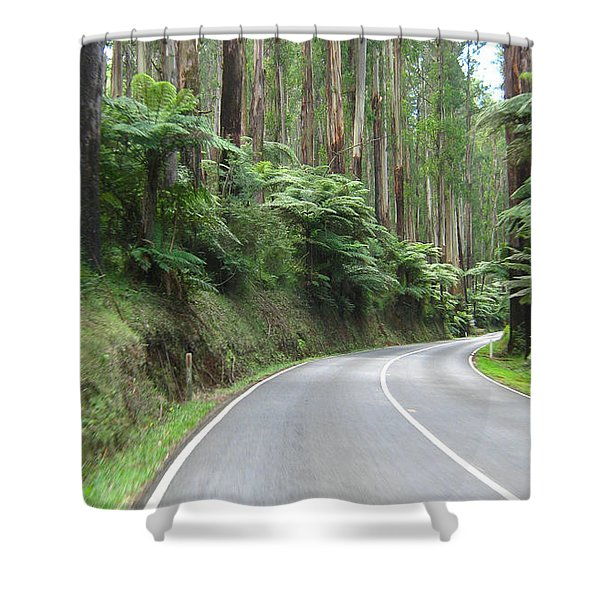 Road 2 Shower Curtain