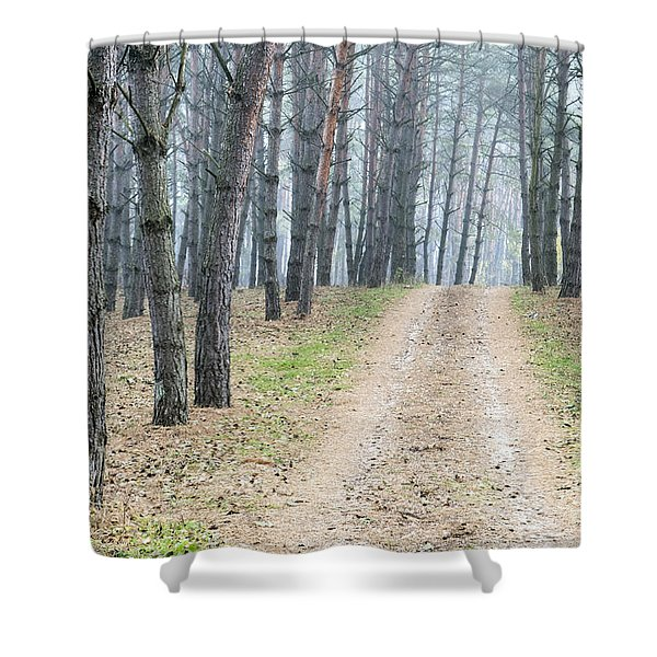 Road To Pine Forest Shower Curtain