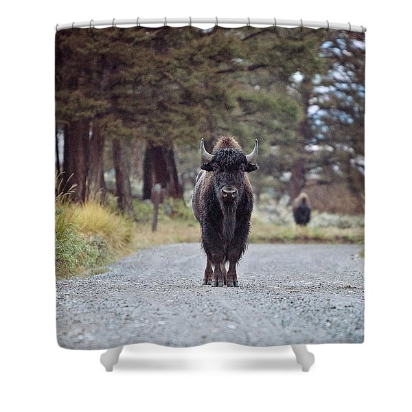 Roadblock Shower Curtain