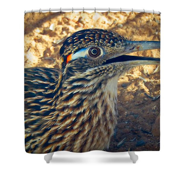 Roadrunner Portrait Shower Curtain