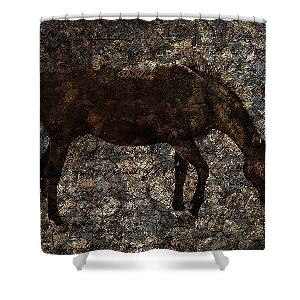 Roan Stallion Shower Curtain